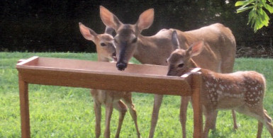 wooden deer trough feeder plans